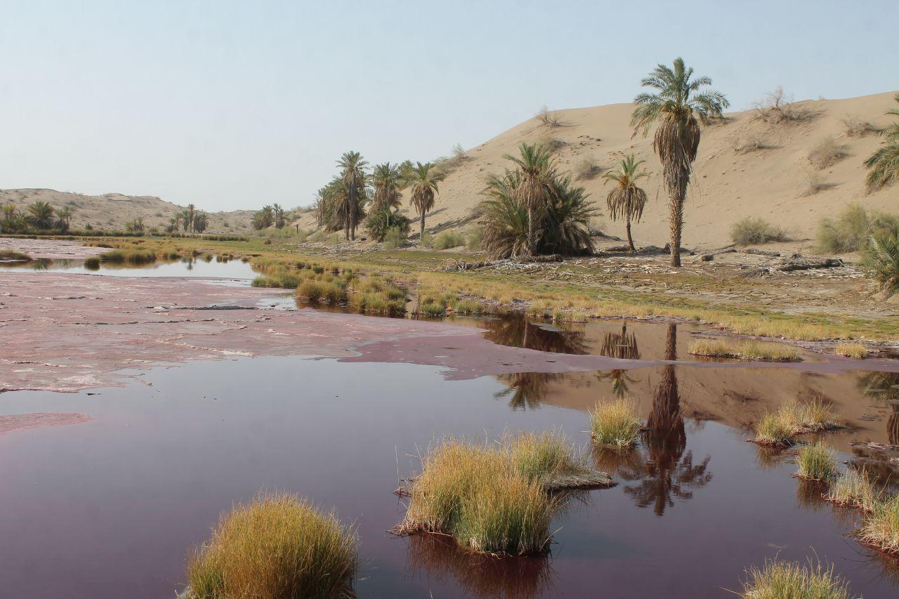 Photo of چشمه کلپورگو جاذبه بکر گردشگری حوضه جازموریان