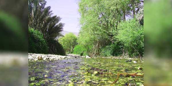 Photo of جنوب کرمان فاریاب موردان تنگ آبشوئیه جاذبه بکر گردشگری در جنوب شرق ایران