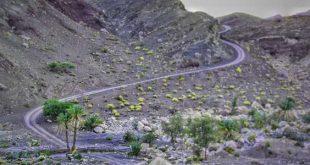 جاده زیبا و سفری به دل جازموریان