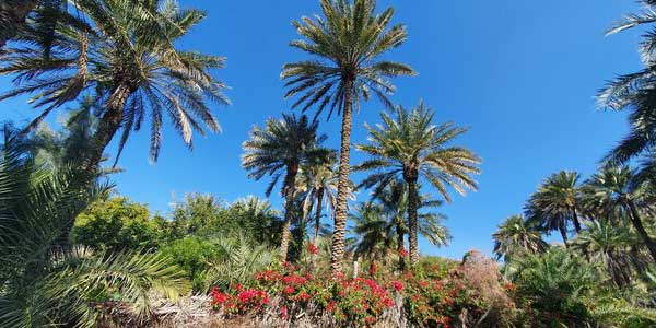 تصاویر روستای کشیت قلعه گنج